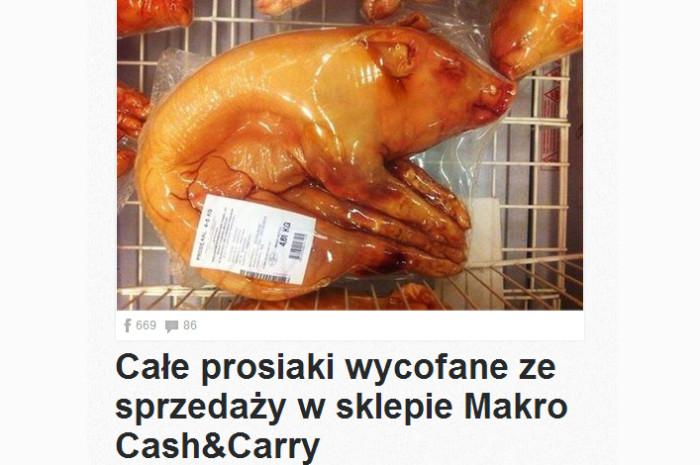 makro cash & carry afera całe prosiaki