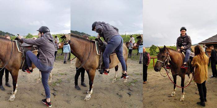 konie huculskie